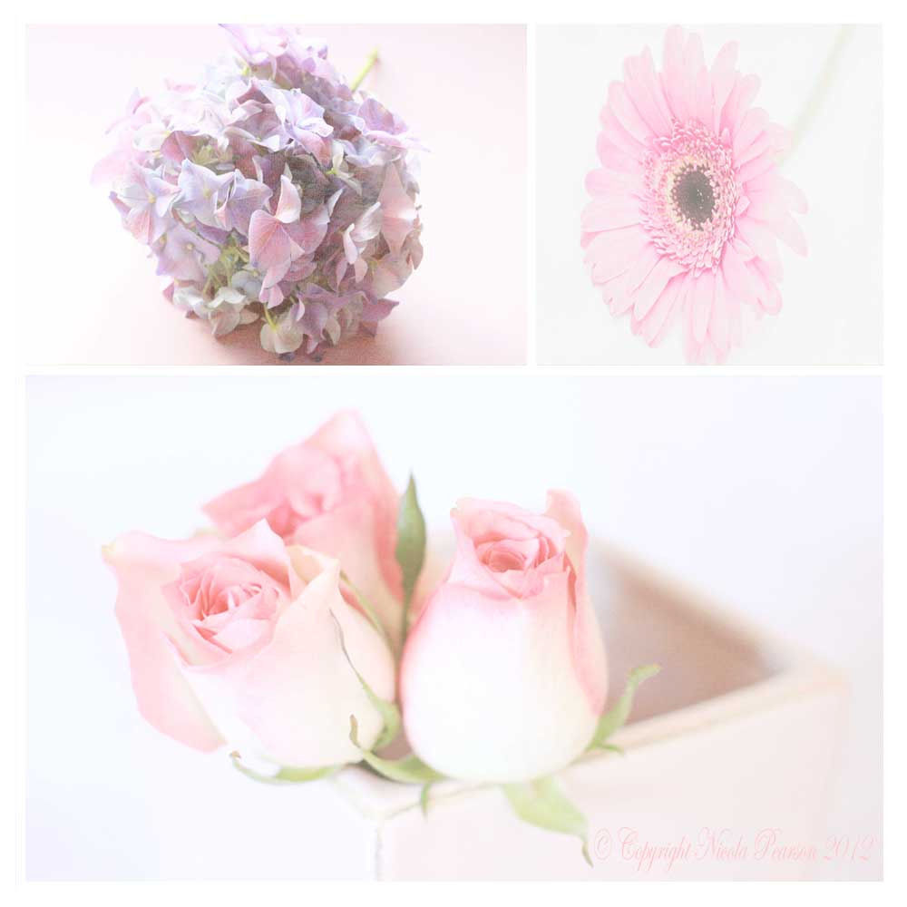 Wedding Spring Flowers: Guide To Spring Seasonal Wedding Flowers For Brides In